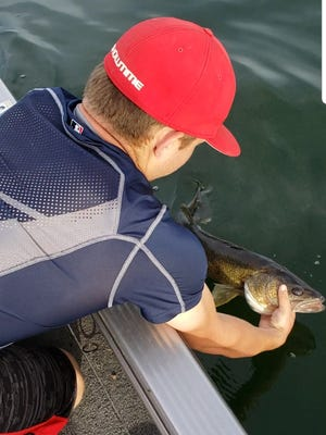 A walleye being released this past Friday evening on Mille Lacs. The small spinner and crawler combination it was caught on was an effective bait combination over the weekend.