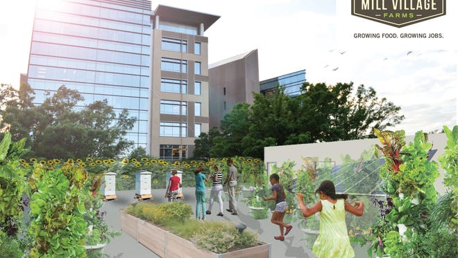 Mill Village Farms, in collaboration with the culinary food tour experience, Dishcrawl Greenville, has been developing the idea for a rooftop farm for several months