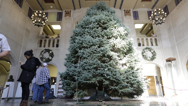 A crew put up the Christmas tree in Purdue Memorial Union on Monday. It is 25 feet tall and 15 feet wide.