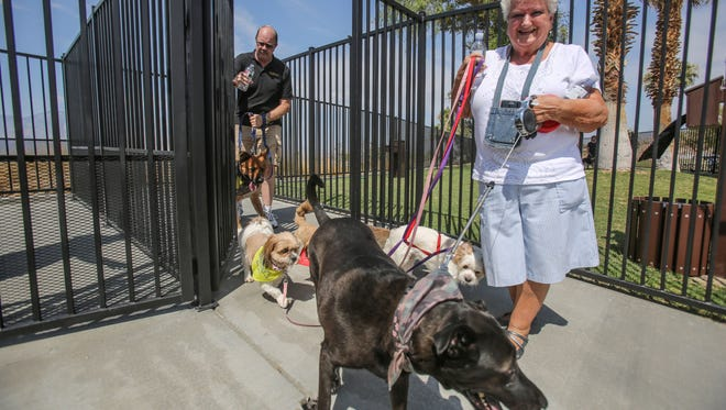 Dorothy Warren, of Desert Hot Springs, with her dogs and a friend's dogs at Rotary Park, the new and only dog park in Desert Hot Springs. Photo taken on Saturday, July 8, 2017.