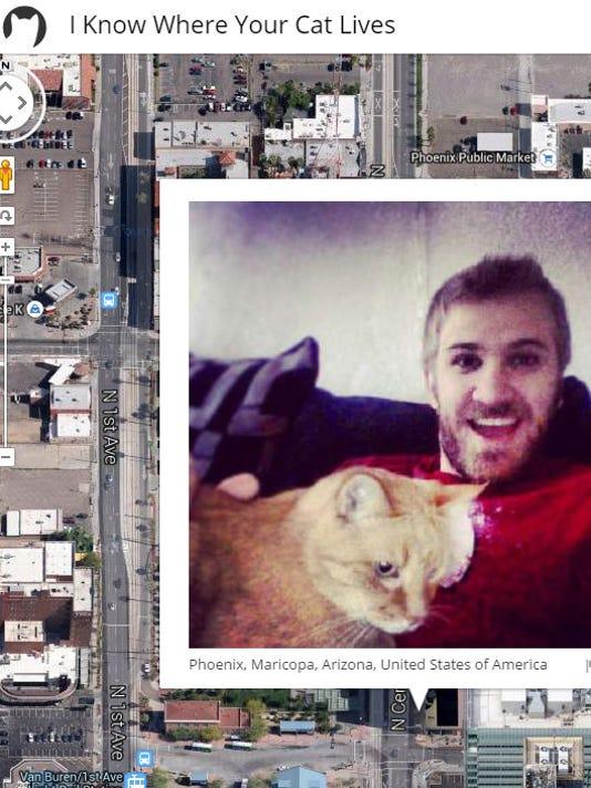 635526213286680397-cat-lives