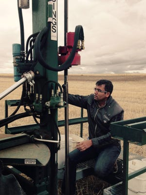 Researcher Rajan Ghimire, Ph.D., is working in the field at NMSU's Agricultural Science Center at Clovis.