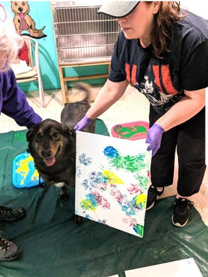 This Walden Humane Society pooch proudly poses with the masterpiece she painted for the art exhibit. {PHOTOS PROVIDED BY WALDEN HUMANE SOCIETY}
