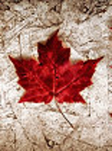 The Canadian Consulate offers 5 facts about Canadians in Arizona.