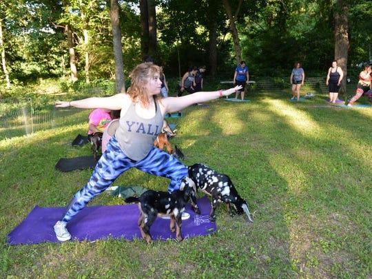 Goat yoga at Sunny Acres Farm in Louisville.