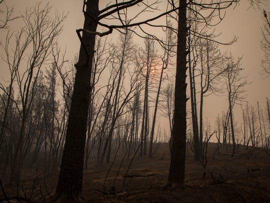 The sun peeks through the smoke and burned out trees near Whiskeytown Lake along Highway 299 in the Whiskeytown National Recreation Area Monday July 31, 2018 near Redding.