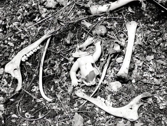 """Road Kill: Deer Baby"" is a black-and-white gelatin"
