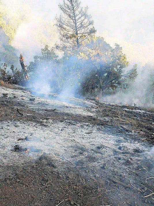 -TurkeyFire-ash