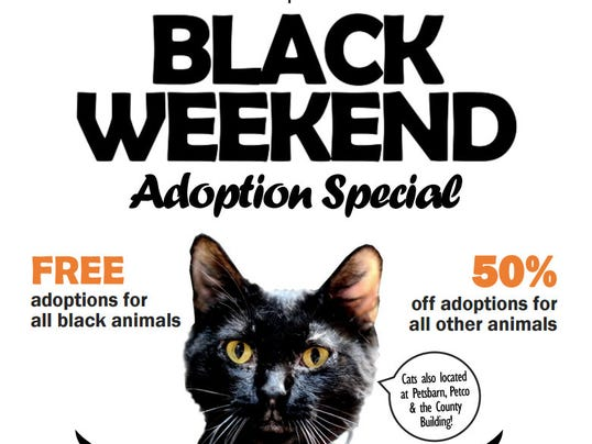 Black Weekend adoption photo