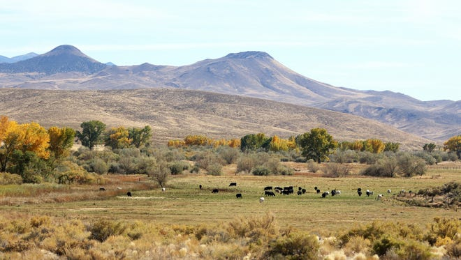 The former Rafter 7 Ranch south of Yerington will be part of the new Walker River State Recreation Area.