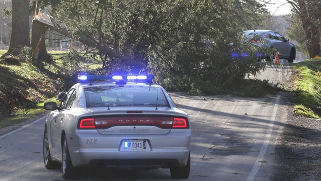 Ohio State Highway patrol closed off a portion of Millsboro Road in Ontario on Wednesday afternoon, after high winds in the area took down a tree.