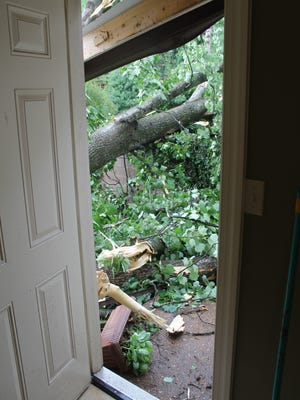 The view from Tiffany Walker's back porch door.