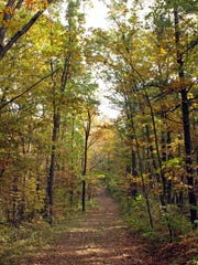 Fall colors line the Greenbush Trails in the Kettle