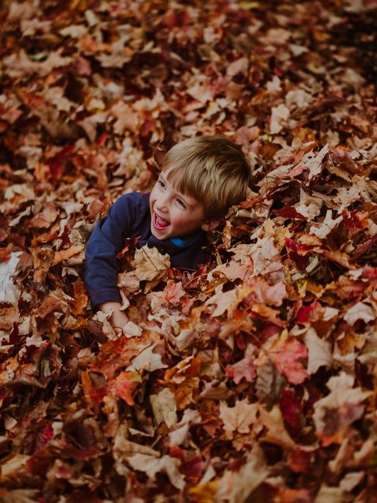 Wilke FSF fall foliage