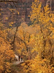 Visitors pass through fall foliage on the Weeping Rock