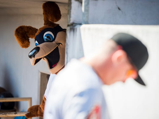 Tennessee Smokies mascot Homer, left, eyes the competition before the game between the Tennessee Smokies and the Jackson Generals at Smokies Stadium on Wednesday, April 11, 2018.