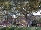 Georgia: Oglethorpe Avenue in Savannah has a canopy