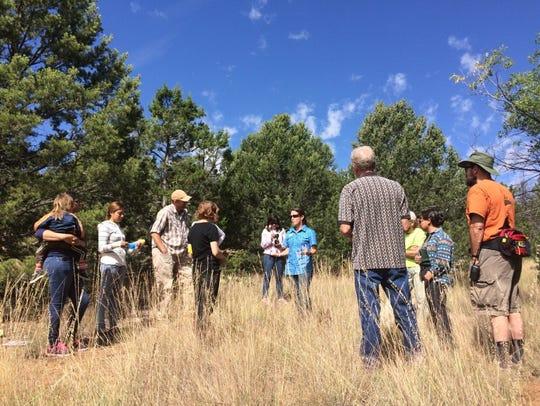 Krista Bonfantine leads a workshop on tree rings for