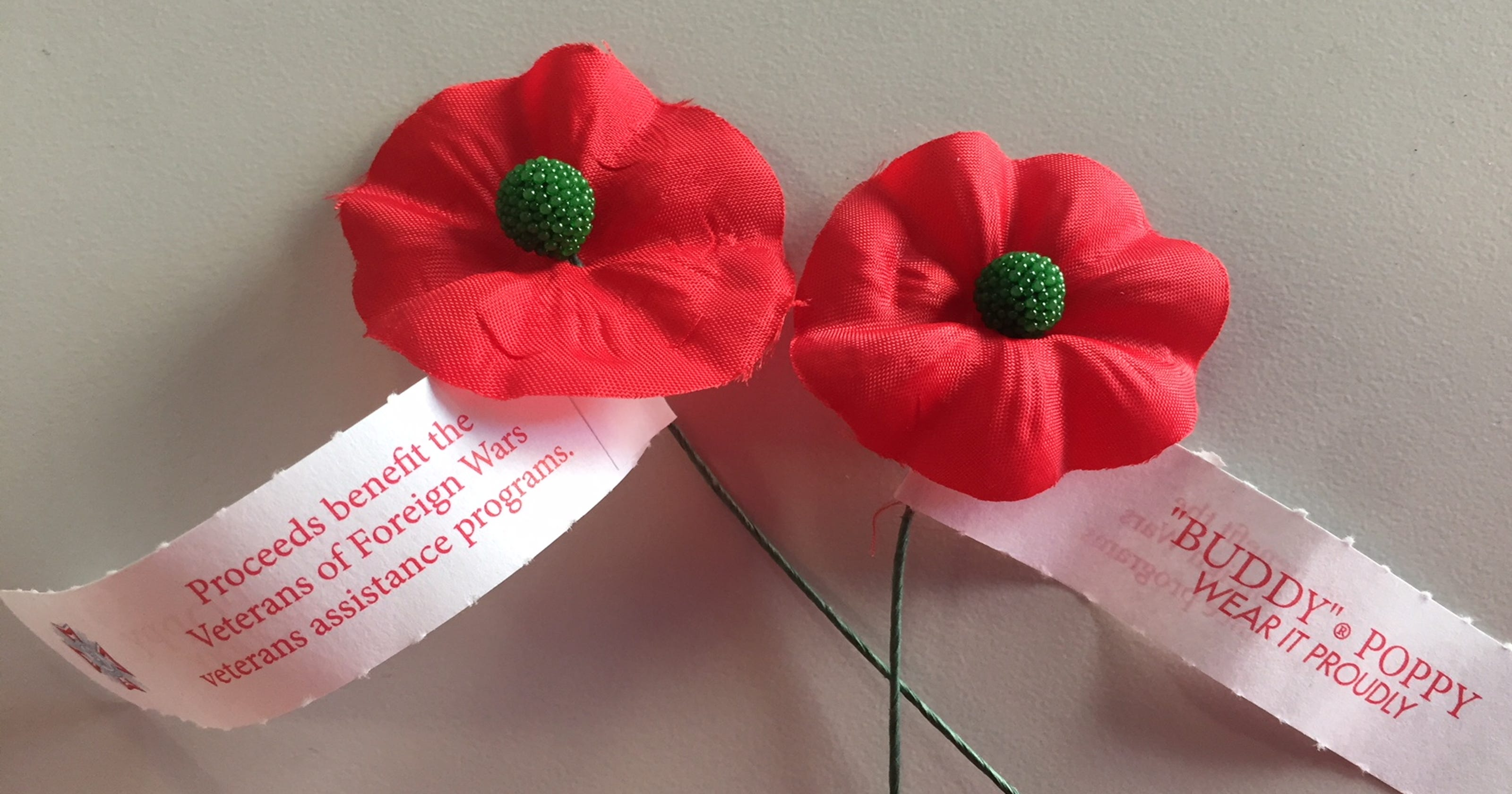 Red poppies remind us to remember veterans' sacrifice on ...