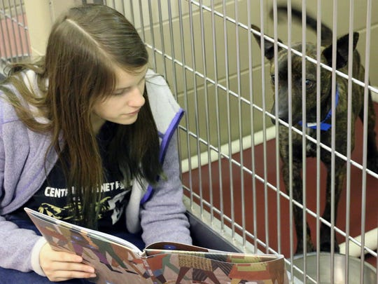 Meredith Anderson said she equally enjoys reading to the dogs at PAWS as much as playing with them outside.