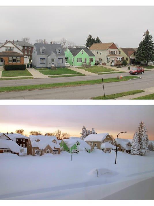 Buffalo No Snow