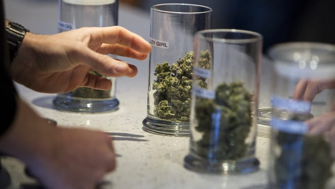 The Arizona Department of Health Services has received about 750 applications for the 31 medical-marijuana licenses that will be awarded in October. The intense competition for the permits has set off a land rush of sorts, with applicants scrambling to lock down properties that regulators might deem best suited for new dispensaries. Proposition 205, which would legalize marijuana for recreational use, would also give medical-marijuana dispensaries in good standing the first shot at the recreational licenses.