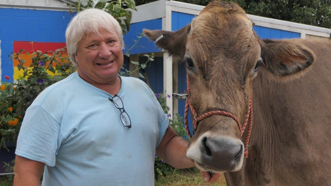 Calvin Nisly poses with one of his Brown Swiss cows at Trails West Brown Swiss Farm in Partridge, Kan.