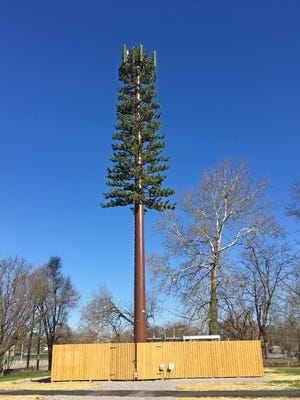 This Verizon cell tower disguised as a tree is at Kings Mill Road and South Penn Street near the old crematorium.