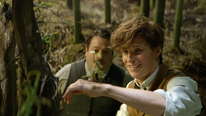 """Eddie Redmayne and Dan Folger star in """"Fantastic Beasts and Where to Find Them."""""""