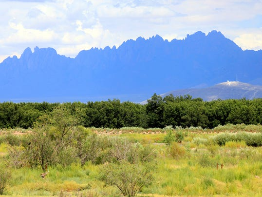 The Mesilla Valley Bosque State Park on the Rio Grande near Mesilla, offers nature hikes, a visitor center with information about wildlife and our environment, and tours and programs.