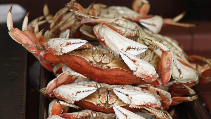 Joe's Crab Shack closes all restaurants in Michigan