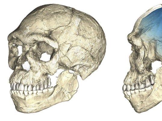 Science Earliest Human