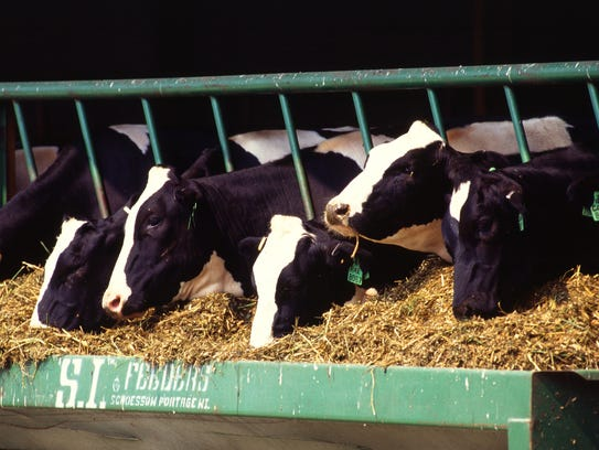 In 2015 the number of Wisconsin dairy farms fell below