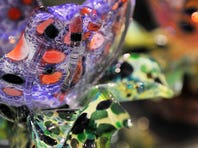 Local glass artist creates pieces that would add sparkle to any decor