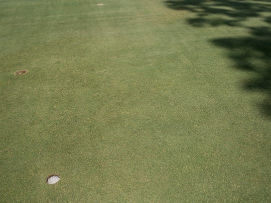 July 25, 2017 - The Overton Park Golf Course greens that were in terrible condition three years ago are now lush. Conditions were so bad in 2014 that the golf house staff routinely warned golfers of the situation and offered them a refund if they found the greens too deplorable.