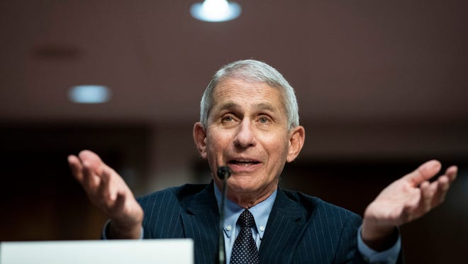 Dr. Anthony Fauci, director of the National Institute for Allergy and Infectious Diseases, testifies before a Senate Health, Education, Labor and Pensions Committee hearing on Capitol Hill on June 30 in Washington.