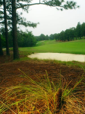 A shot of the fourth hole on the No. 2 course of the Pinehurst Golf Course in Pinehurst, N.C. Native vegetation has replaced the rough.