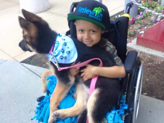 "Liz Niemiec flew to Los Angeles to give 7-year-old Anthony his wish, ""a policeman's dog."""