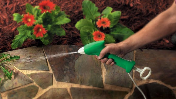 Get rid of weeds brought on by monsoon rains as soon