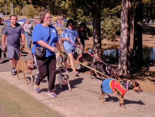 Walk for Wags and Whiskers