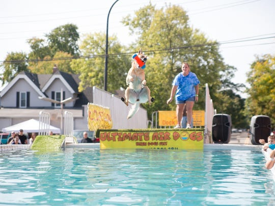 The Ultimate Air Dogs show off these canines' abilities.