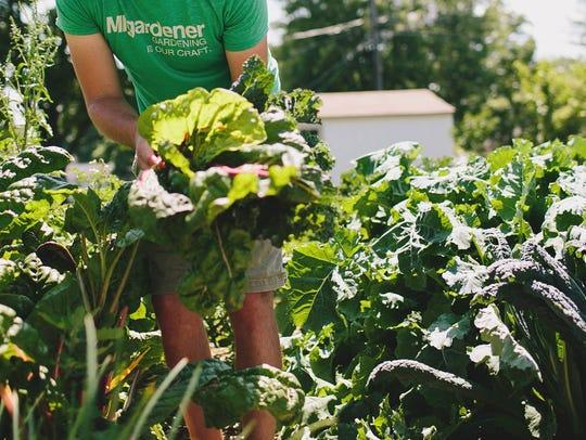 The Marion's backyard garden in Marysville