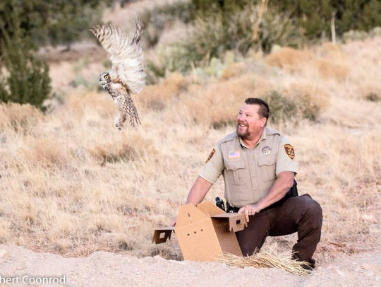Sheriff's Deputy Ted Bumstead releases a great horned