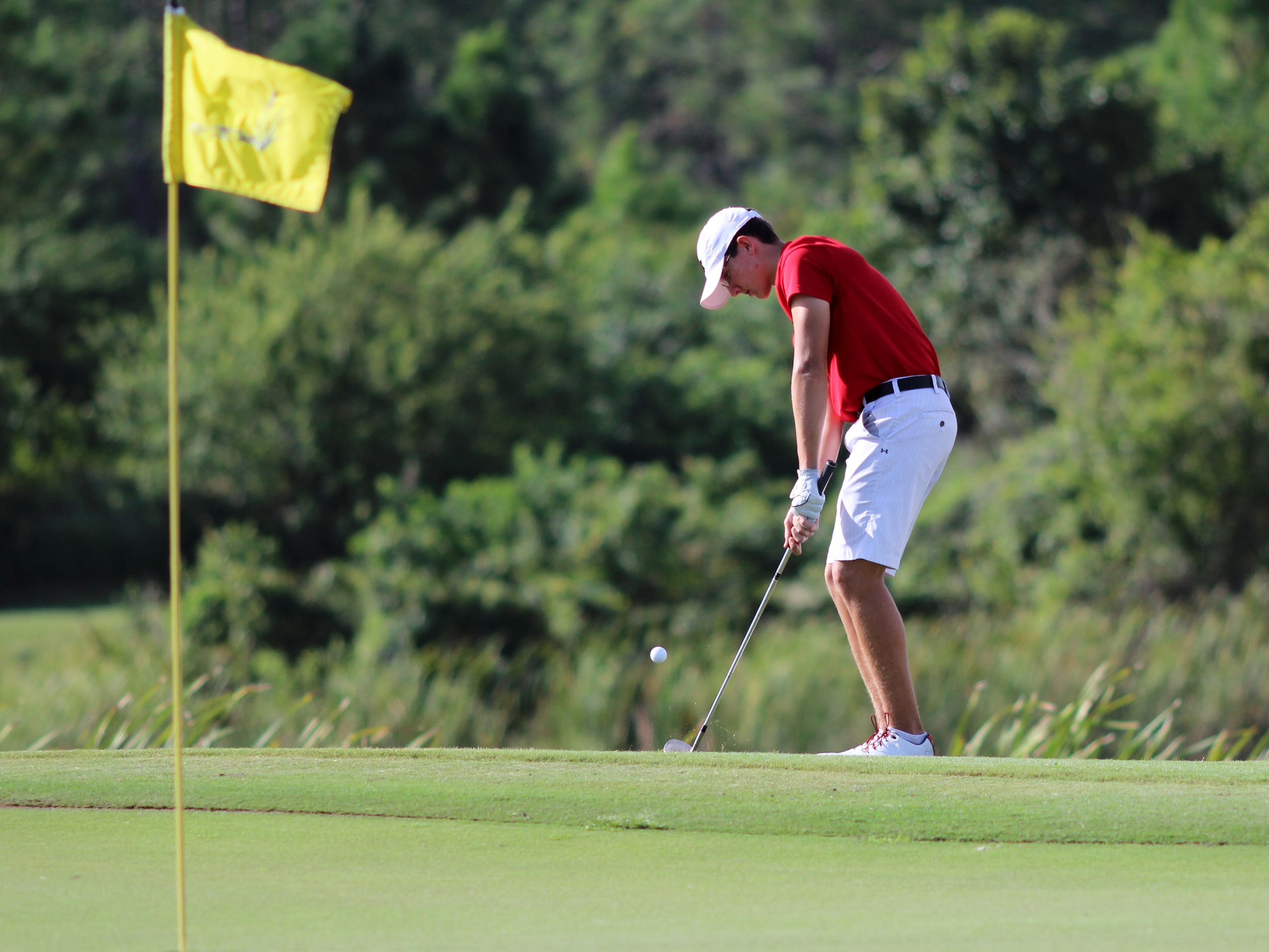 ECS' Shane Reynolds chips the ball during the Boys' HS District Tournament Tuesday morning at the Golf Club of the Everglades.