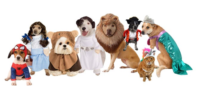 Target's Halloween cat and dog costumes includes mermaids, Star Wars characters, unicorns and more.
