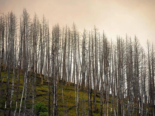 -08142015_sucker creek fire-s.jpg_20150819.jpg