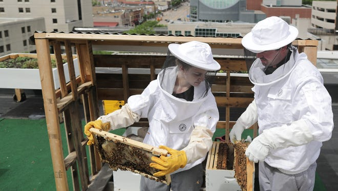 Rye chef Nick Morse, right, and Samantha Hansen check the restaurant's urban bee apiary on the roof of the CopperLeaf Hotel on Thursday in Appleton.