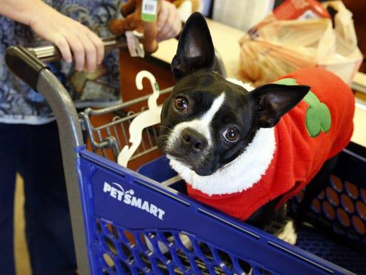 petsmart_christmas dog