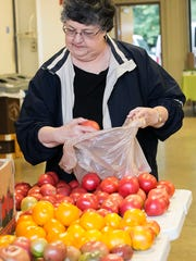 Patsy Taylor selects some late season tomatoes as she visited the Rutherford County Farmers Market.