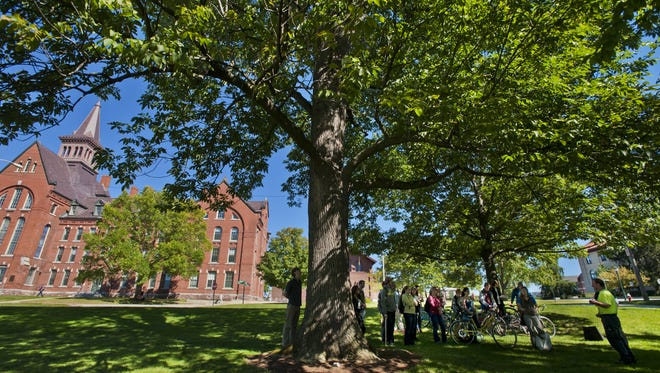 University of Vermont students learn from arborist Brian Sullivan in September 2013.